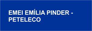 O atributo alt desta imagem está vazio. O nome do arquivo é EMILIA-PINDER-PETELECO.jpg